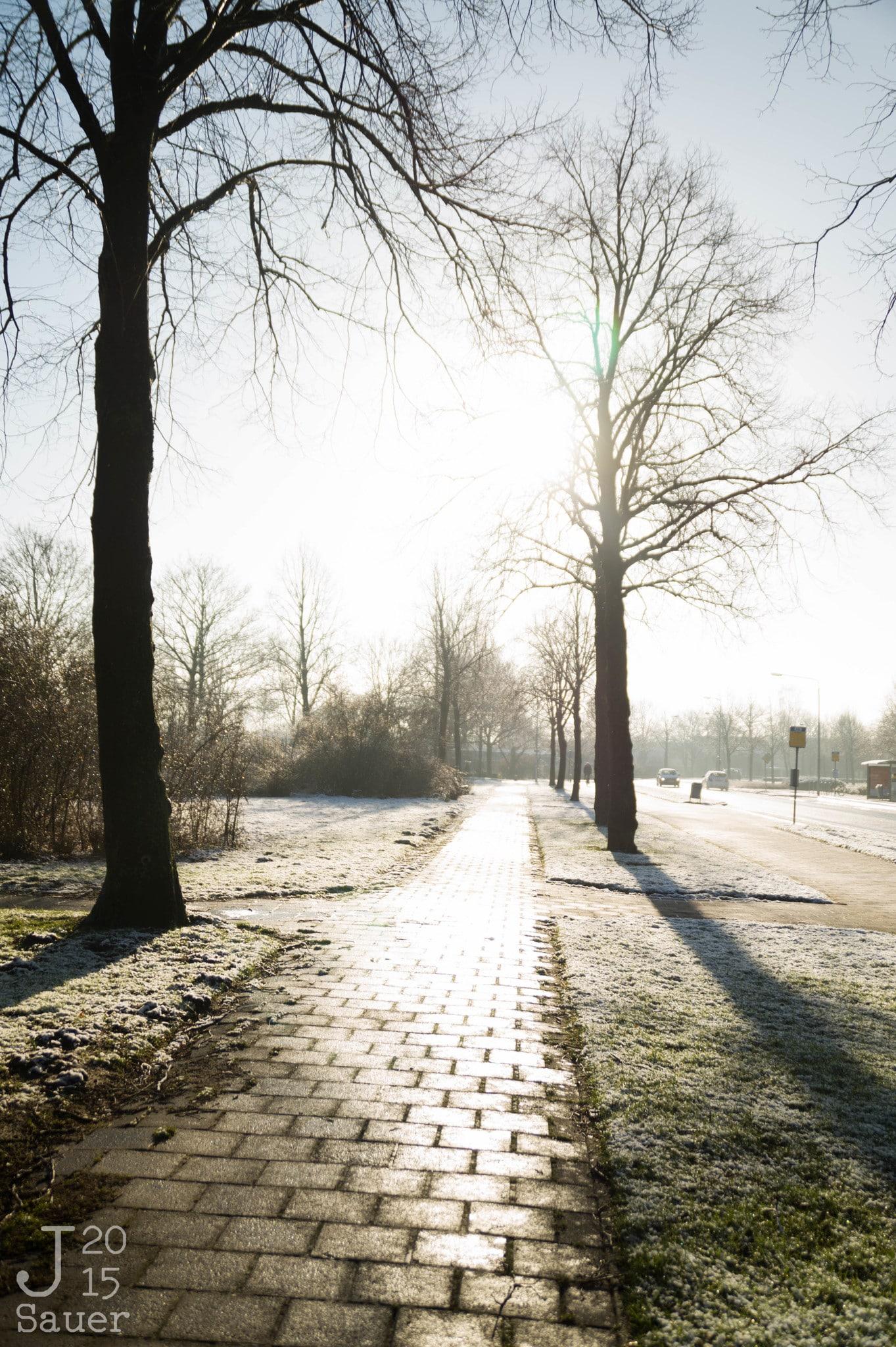 Winter sun reflects on the street